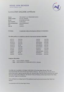 dna_certificaat